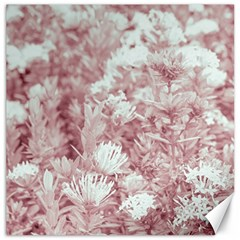 Pink Colored Flowers Canvas 12  X 12