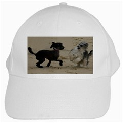 2 Chinese Crested Playing White Cap