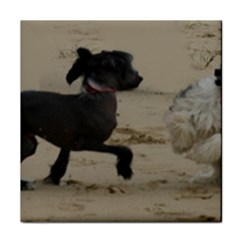 2 Chinese Crested Playing Tile Coasters