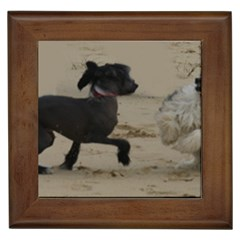 2 Chinese Crested Playing Framed Tiles