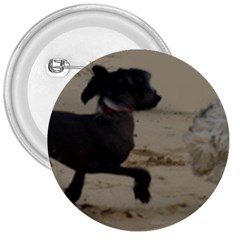 2 Chinese Crested Playing 3  Buttons