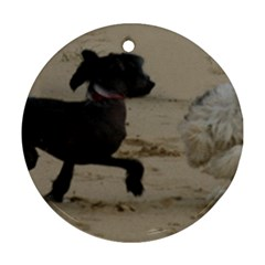 2 Chinese Crested Playing Ornament (round)