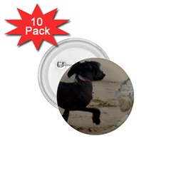 2 Chinese Crested Playing 1 75  Buttons (10 Pack)