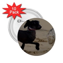 2 Chinese Crested Playing 2 25  Buttons (10 Pack)