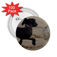 2 Chinese Crested Playing 2 25  Buttons (100 Pack)