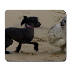 2 Chinese Crested Playing Large Mousepads