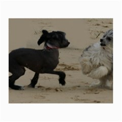 2 Chinese Crested Playing Small Glasses Cloth