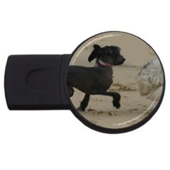 2 Chinese Crested Playing Usb Flash Drive Round (4 Gb)