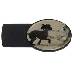 2 Chinese Crested Playing Usb Flash Drive Oval (4 Gb)