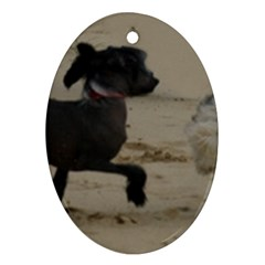 2 Chinese Crested Playing Oval Ornament (two Sides)