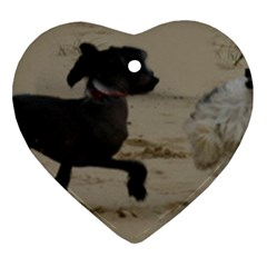 2 Chinese Crested Playing Heart Ornament (two Sides)