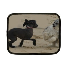 2 Chinese Crested Playing Netbook Case (small)