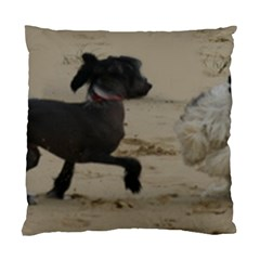2 Chinese Crested Playing Standard Cushion Case (one Side)