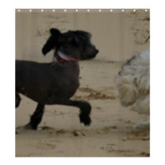 2 Chinese Crested Playing Shower Curtain 66  X 72  (large)