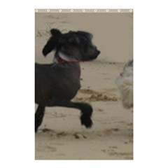 2 Chinese Crested Playing Shower Curtain 48  X 72  (small)
