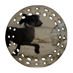 2 Chinese Crested Playing Ornament (round Filigree)