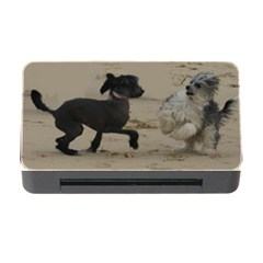 2 Chinese Crested Playing Memory Card Reader With Cf