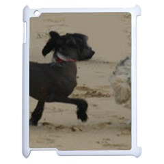 2 Chinese Crested Playing Apple Ipad 2 Case (white)