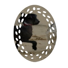 2 Chinese Crested Playing Ornament (oval Filigree)