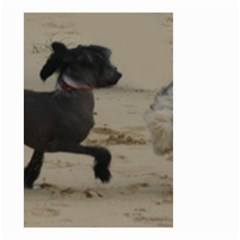 2 Chinese Crested Playing Small Garden Flag (two Sides)