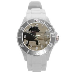 2 Chinese Crested Playing Round Plastic Sport Watch (l)
