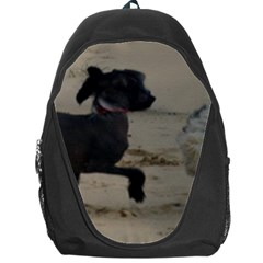 2 Chinese Crested Playing Backpack Bag