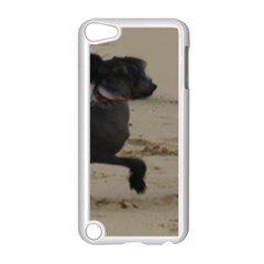 2 Chinese Crested Playing Apple Ipod Touch 5 Case (white)