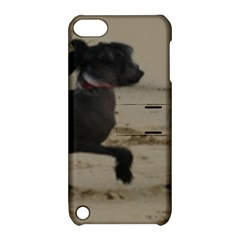 2 Chinese Crested Playing Apple Ipod Touch 5 Hardshell Case With Stand