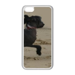 2 Chinese Crested Playing Apple Iphone 5c Seamless Case (white)