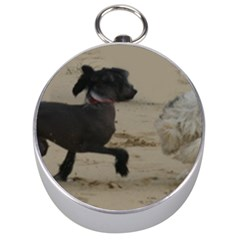 2 Chinese Crested Playing Silver Compasses