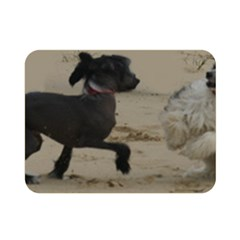 2 Chinese Crested Playing Double Sided Flano Blanket (mini)