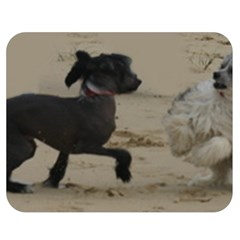 2 Chinese Crested Playing Double Sided Flano Blanket (medium)