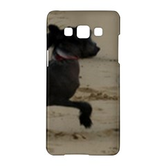 2 Chinese Crested Playing Samsung Galaxy A5 Hardshell Case