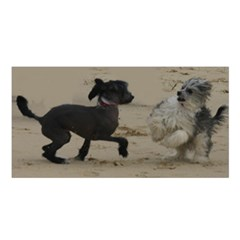 2 Chinese Crested Playing Satin Shawl