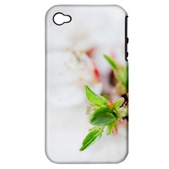 Fragility Flower Petals Tenderness Leaves  Apple Iphone 4/4s Hardshell Case (pc+silicone)