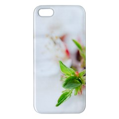 Fragility Flower Petals Tenderness Leaves  Apple Iphone 5 Premium Hardshell Case
