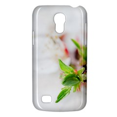 Fragility Flower Petals Tenderness Leaves  Galaxy S4 Mini