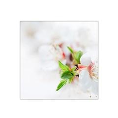 Fragility Flower Petals Tenderness Leaves  Satin Bandana Scarf