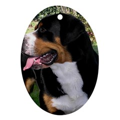 Greater Swiss Mountain Dog Oval Ornament (two Sides)