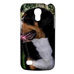 Greater Swiss Mountain Dog Galaxy S4 Mini
