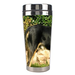 Gsmd Full Stainless Steel Travel Tumblers