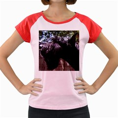 Giant Schnauzer Women s Cap Sleeve T Shirt