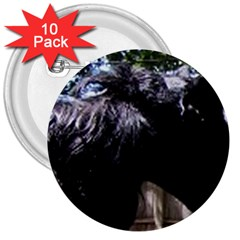 Giant Schnauzer 3  Buttons (10 Pack)