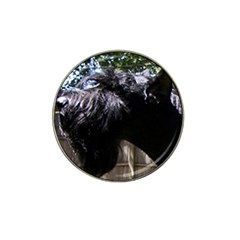 Giant Schnauzer Hat Clip Ball Marker (4 Pack)
