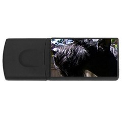 Giant Schnauzer Rectangular Usb Flash Drive