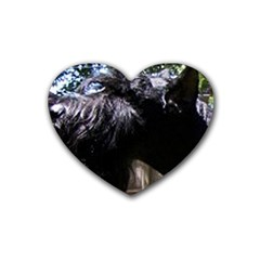 Giant Schnauzer Heart Coaster (4 Pack)