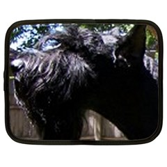 Giant Schnauzer Netbook Case (xl)