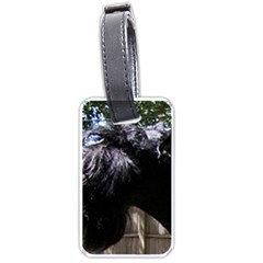 Giant Schnauzer Luggage Tags (two Sides)