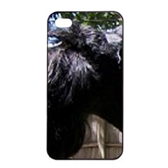 Giant Schnauzer Apple Iphone 4/4s Seamless Case (black)