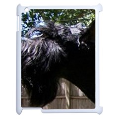 Giant Schnauzer Apple Ipad 2 Case (white)
